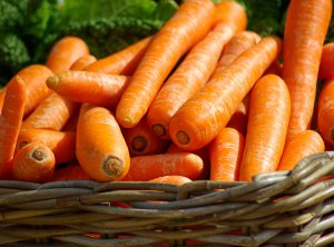 Carrot Organic by Organic Naturally Professional