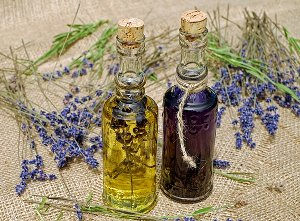 Amazing Benefits of Lavender Oil and Tea Tree Oil