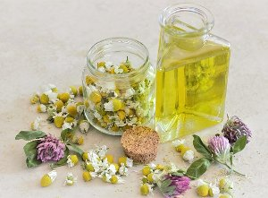 Use and Benefits of Chamomile Oil